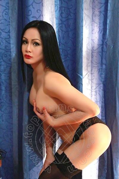 Angelika Asiatica  ROMA 3245611031